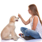 Basic Obedience/Puppy Class begins Monday September 12th