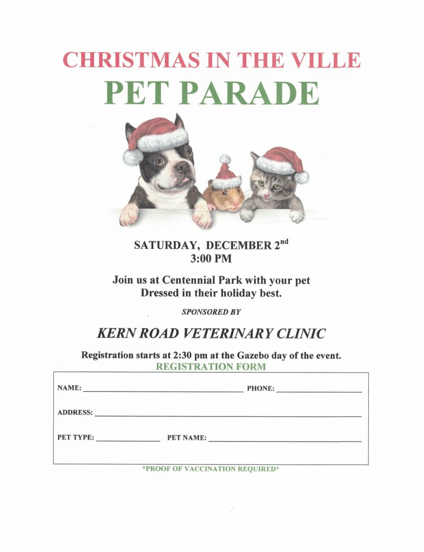 christmas in the ville pet parade - Christmas Pet Names
